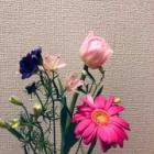 『【考えごと】花を買う日。』の画像