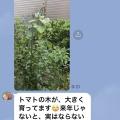物騒&衝撃&ゆる〜い動画
