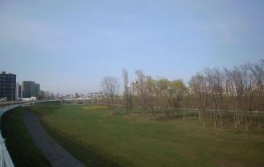 『豊平川河畔公園 四季のうつろい』の画像
