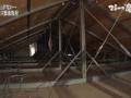 【画像】レオパレスの屋根裏、繋がっていたwwwww