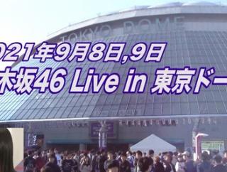 【乃木坂46】この危機的状況・・・『全ツ東京ドーム公演』開催が本当に怪しくなってきた件・・・