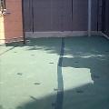 防草シート敷設・廃材小屋組み