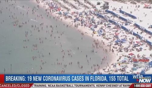 コロナ自粛中にフロリダの海水浴ビーチが海開き 人が殺到しアメリカ人激おこ(海外の反応)