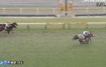 【競馬】ダイヤモンドSは木幡巧騎乗の16番人気ミライヘノツバサがV