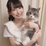 『[ノイミー] ひぃちゃんの猫大きいねw【鈴木瞳美】』の画像