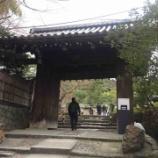 『【京都】高台寺の御朱印』の画像