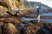 【北海道】知床半島トレッキング中の男子大学生(21)、海岸で高波にさらわれ行方不明 友人が電話が通じる場所まで戻り通報…羅臼町