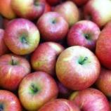 『今年も「奇跡のりんご」が蔵に届きました』の画像
