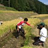 『稲刈りスタート! 初日は快晴で暑かった・・・』の画像