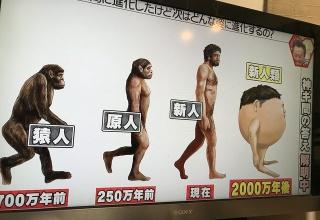【悲報】2000万年後、進化を続けた人間の姿がヤバすぎるwwwwwwwwwwwww