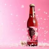 """『【期間限定】まるで飲む""""桜餅""""。「サンクトガーレン さくら」』の画像"""