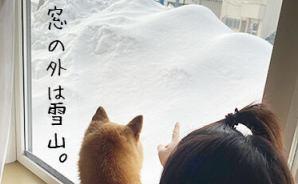 雪で作られた「いくつもの名峰」