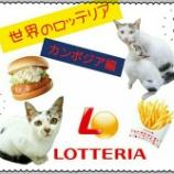 『【世界のロッテリア】を食べてみよう!【カンボジア編】』の画像