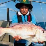 『釣り人の立場として言わしてもらうが辻元清美、鯛に限らず魚は内臓から腐るぞ、適当な事を言うな!』の画像