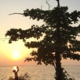 『スリランカへのレクイエム』の画像