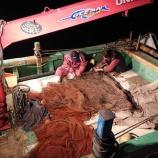 『高千の板引き漁』の画像