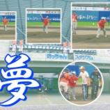 『夢の始球式 In マンダリンパイレーツ』の画像