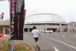 スタードームに『交野マラソンのノボリ』がメッチャ立ちすぎてて戦国時代の城みたいになってる!