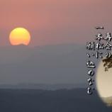 『高田の1本松』の画像