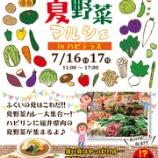 『7/16(日)・17(月) 「ふくい夏野菜マルシェ」 @ハピテラス』の画像