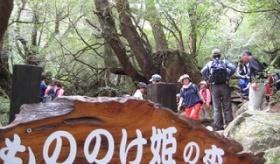 【世界のジブリ】  日本の屋久島に 「もののけ姫の森」というものが、作られたらしいぞ!   海外の反応