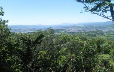 『嵩山(だけさん)散策 Jun 7、2020』の画像