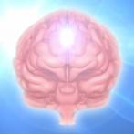 【画像】俺の脳を破壊する画像くれwwwwwww