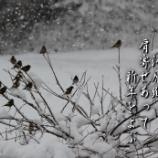 『新年をよぶ』の画像