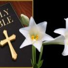 『たとえ、離れて居ても!聖書の真実と神格カリスマ。心の癒やしの旅路。』の画像