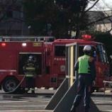 『令和2年戸田市消防出初式は1月12日(日)午前9時半から。消防車や救急車などの車両行進から始まり、防災ヘリの上空飛行などを経た後に、一斉放水が行われます。見学もできます!』の画像