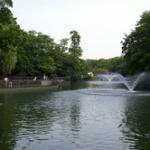 【これはひどい】井の頭公園の池を水抜き 池に捨てられてたものが酷すぎる・・・