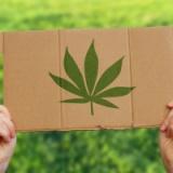 """【悲報】「大麻=悪」は日本だけ!世界の""""大麻経済""""はここまできている!!!"""