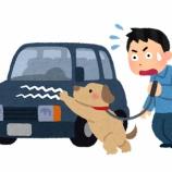 『「桔梗交番情報」  (自動車にキズ付けられる)』の画像