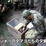 【動画】陸自、レンジャーのタマゴたちのサバイバル訓練「今日の夕飯はヘビとカエル」