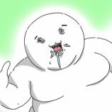 『(   ´・ω・`   )マクナルのマックポテト食べたい』の画像