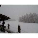 『雫石は朝から雪降り。フィッシャー試乗会開催。』の画像