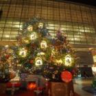 『LAOWA9mmF2.8MFT用によるクリスマスツリー① 2019/12/03』の画像