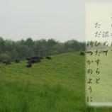 『雨雲』の画像