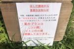 ほしだ園地の「星のブランコ」が4月25日~5月11日まで閉場してる!~ピトンの小屋やクライミング施設も封鎖中~