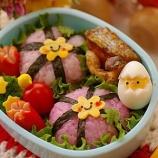 『シンプルなお弁当』の画像