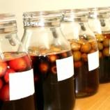 『限定100セット 無農薬栽培の青梅を使った梅酢手づくりキットのご紹介』の画像