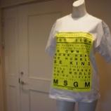 『MSGM(エムエスジーエム)ボックスロゴTシャツ』の画像