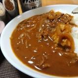 『旅行から帰国した日の夕食~ハッシュドビーフ』の画像
