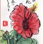 四季の花図鑑