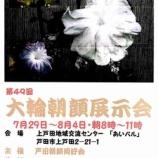 『大輪朝顔展示会、7月29日から上戸田地域交流センターあいパルで開催されます!8月4日まで。見事な大輪をご鑑賞ください。』の画像