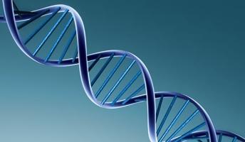 友達は5代前の先祖を共有する親戚!?『1%の遺伝子同じ』