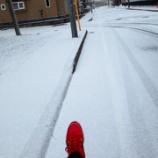 『冬のシューズ~色々』の画像