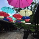 『梅雨飾り』の画像