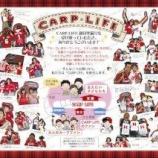 『【クラウドファンディング】広島カープファンのためのフリーペーパー創刊資金募る』の画像