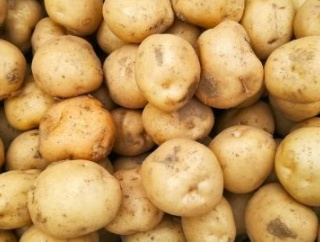 ビデオ会議中に「ジャガイモになるフィルター」を消せなくなった上司の末路がコチラwwww